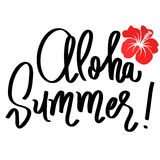Handmade vector calligraphy and text aloha summer Royalty Free Stock Photos