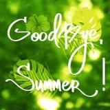 Handmade vector calligraphy and text Goodbye Summer Stock Photo