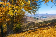 Handmade wooden bench under the tree. In fall colors. beautiful view in to the distant mountain. wonderful autumn scenery royalty free stock photography