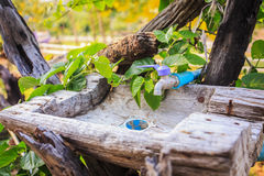 Handmade wooden sinks with blue pipe Royalty Free Stock Photo