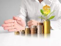 Handmenschliche Hand, die Münze zum Geld setzt Lizenzfreie Stockbilder