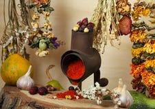 Handmill, especia y flores secas Foto de archivo libre de regalías