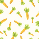 Handpaint watercolor carrot Royalty Free Stock Photos
