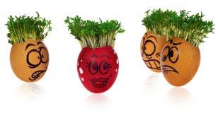 Handpainted пасхальные яйца в смешное вспугнутое и удивленное мультяшном Стоковые Изображения RF