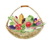 Handpainted clipart акварели с свежими овощами в корзине стоковое изображение