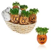 Handpainted Easter eggs in funny scared and surprised cartoonish faces in the basket with cress like hair look at the outstanding. Handpainted Easter eggs in stock image