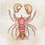 Handpainted lobster background Stock Image