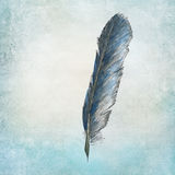 Handpainted raven feather Royalty Free Stock Images