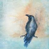 Handpainted raven sitting Stock Photos