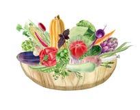 Handpainted vattenfärgclipart med grönsaker på skärbräda Fotografering för Bildbyråer