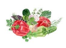 Handpainted vattenfärgclipart med nya grönsaker Royaltyfri Bild