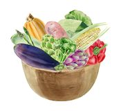 Handpainted watercolor clipart with fresh vegetables in bowl Stock Photo