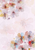 Handpainted watercolor flowers card Royalty Free Stock Photography