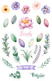 Handpainted Watercolor Flowers,leaves And Cute Unicorn. Royalty Free Stock Images