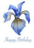 Handpainted watercolor Iris flowers card Stock Images