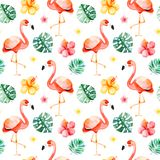 Handpainted watercolor seamless pattern with multicolored flower,tropical leaves,flamingo bird. On white background.Tropical background.Perfect for your project Stock Images