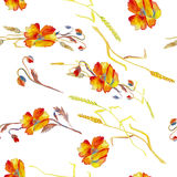 Handpainted watercolor vector illustration of poppies, grass and Royalty Free Stock Photo