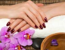 Handpflege und Maniküre stockfotos