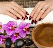 Handpflege und Maniküre lizenzfreies stockfoto