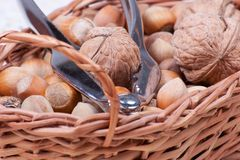 Handpiece for cracking nuts in basket close view Royalty Free Stock Photos