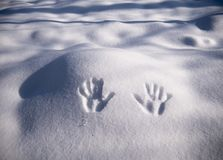 Handprint на снеге Руки отпечатка на снеге стоковые фотографии rf