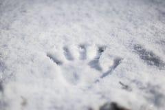 Handprint en nieve fresca Imágenes de archivo libres de regalías