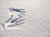 Handprint na neve Mãos da impressão na neve imagem de stock