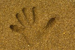Handprint on the sand on the seashore. stock photo
