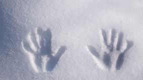 Handprint on snow. imprint hands on snow stock photography