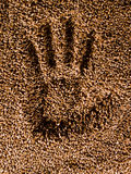 Handprint wheat Stock Image