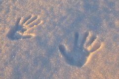 Handprints su neve fresca Fotografie Stock Libere da Diritti