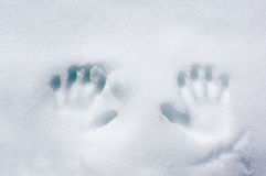 Handprints on winter snow Royalty Free Stock Photo