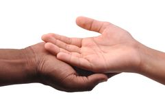 Hands. Different human hands on isolated background Royalty Free Stock Images