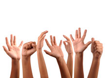 Hands. Raised freedom hands on isolated background Royalty Free Stock Images