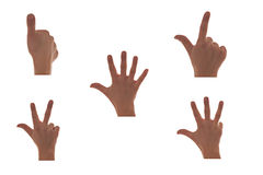 Hands. Counting to five isolated on white background Stock Photos