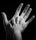 Hands Stock Photos