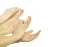 Hands. Man is giving applause on a white background Stock Photography
