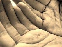 hands στοκ φωτογραφίες