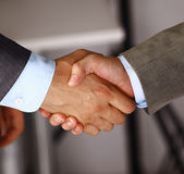 Hands. Closeup of a business hand shake between two colleagues Stock Images