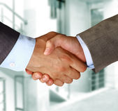 Hands. Closeup of a business handshake between two colleagues Royalty Free Stock Photography