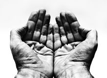 Hands. Two hands with palms up Royalty Free Stock Image