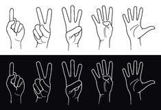 Hands. Counting Hands from one to five. Vector Stock Photos
