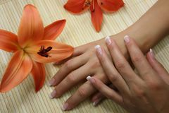 Nails with flower Stock Image