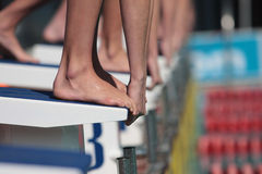 Hands. Divers on starting block ready to swim in gala, only hands and feet visable Royalty Free Stock Photos
