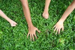 Hands. Children's hands royalty free stock image