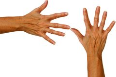Hands. Two female hands royalty free stock photo