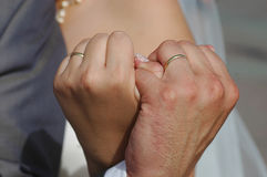 Hands. The husband and the wife Stock Photography