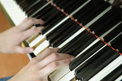 Hands above keys of the piano royalty free stock image
