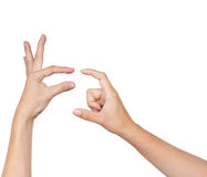 Hands action isolated Royalty Free Stock Photography
