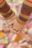 Hands against  leaves Stock Images